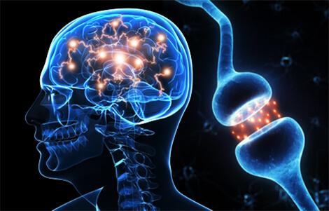 Cerebral X Precision Focus